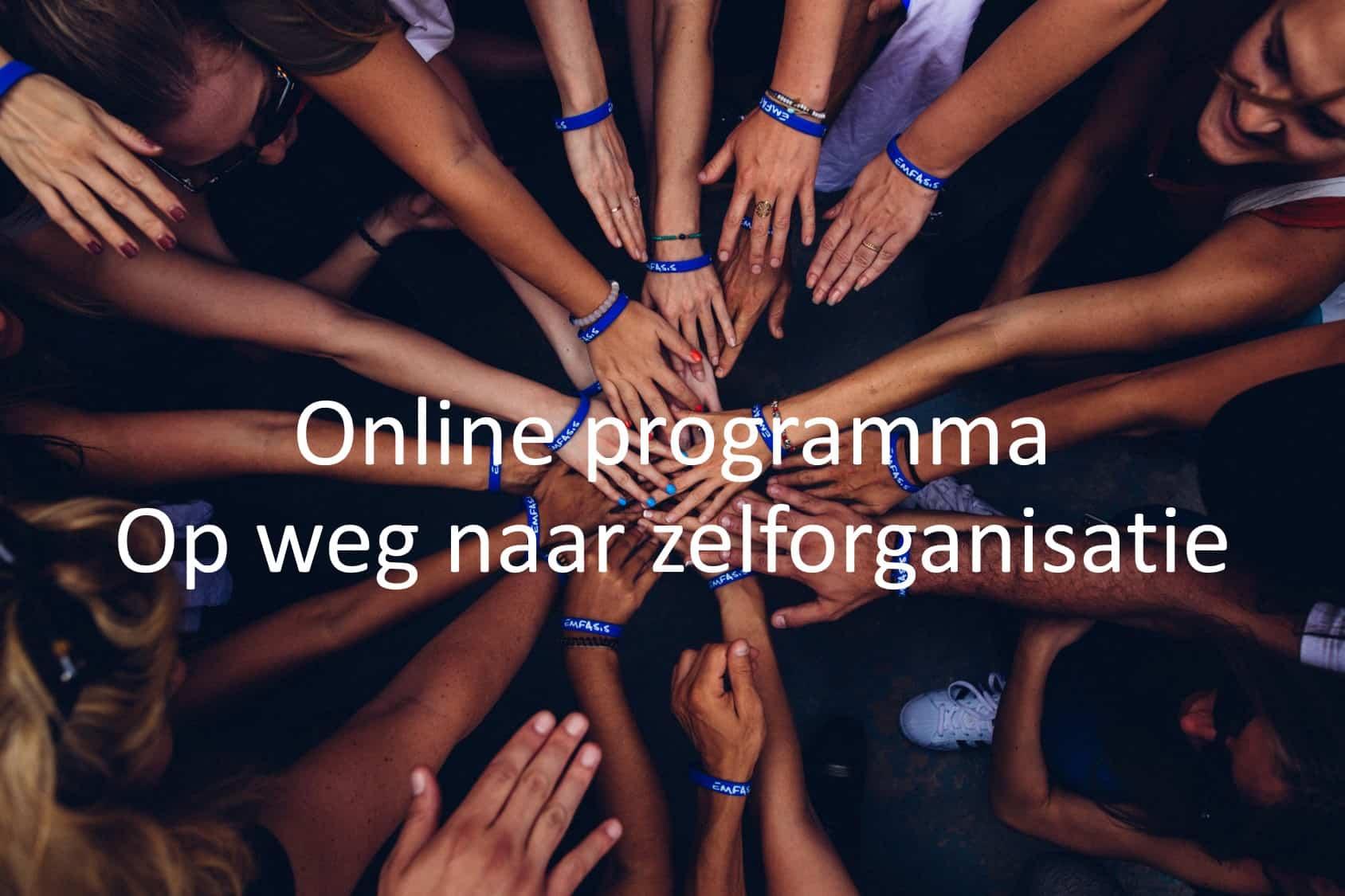 Online programma Op weg naar zelforganisatie, organisatieontwikkeling