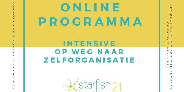 plaatje-online-programma-intensive-op-weg-naar-zelforganisatie